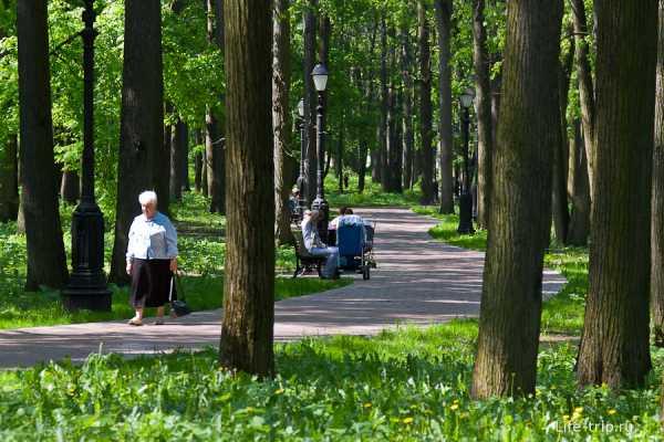 Люди в парке фото чаще диагностируется